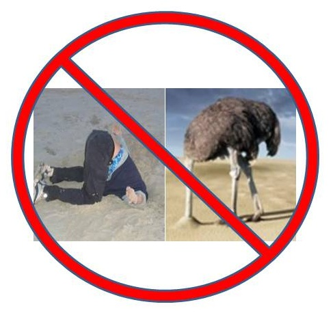 Don't bury your head in the sand to avoid reality